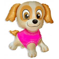 Balón Buldog Puppy