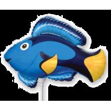 Balónik Ryba modrá