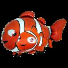 Balónik Nemo