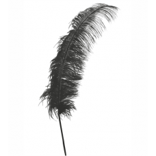 Pierko čierne 50 cm