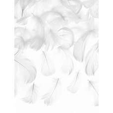 Pierka biele 3g