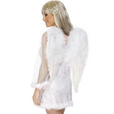 Anjelské krídla 50x60 cm